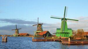 10 мая: сегодня отмечается Всемирный день ветряка и земледельца