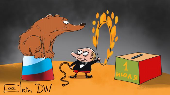 Медведь прыгает на урну для голосования по поправкам в Конституцию РФ - карикатура Сергея Елкина