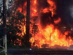 В ГСЧС сообщили, что в 8 областях ожидается чрезвычайный уровень пожарной опасности