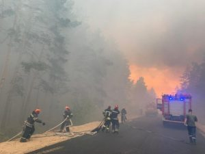 В Украине объявили чрезвычайный уровень пожарной опасности на ближайшие дни